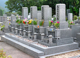 無縁墓の処理:どれぐらい放っておくと撤去されるの?