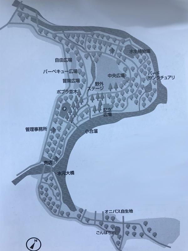 クワガタの採集場所・東京都
