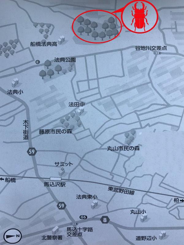 クワガタの採集場所・千葉県