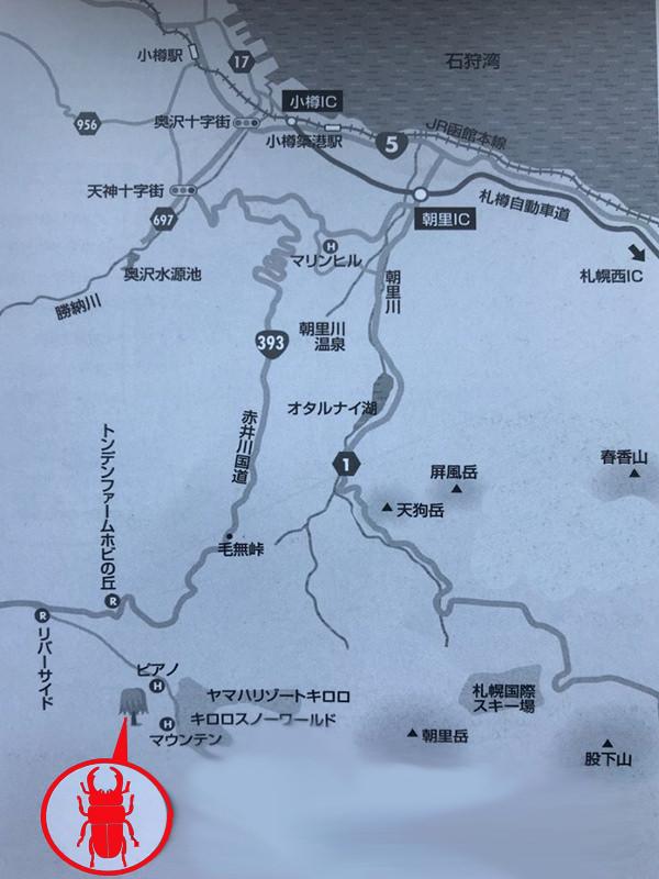 クワガタの採集場所・北海道