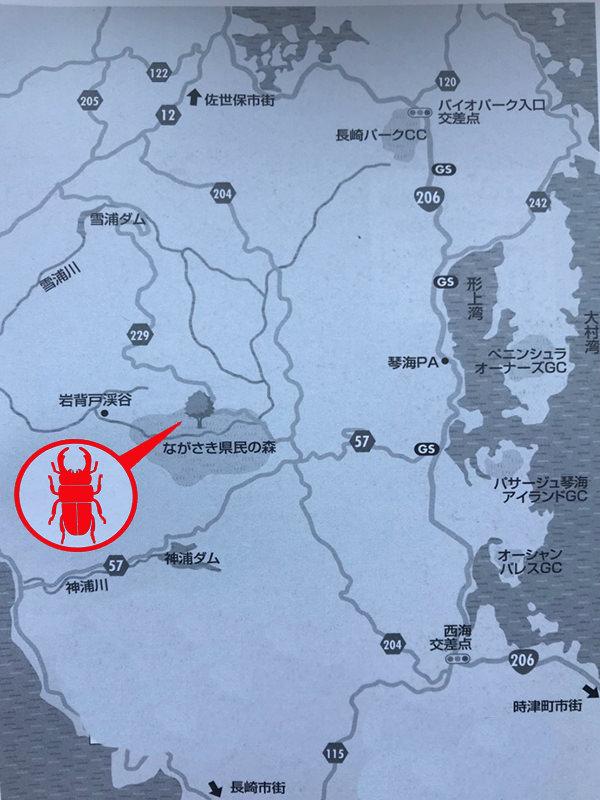 クワガタの採集場所・長崎県