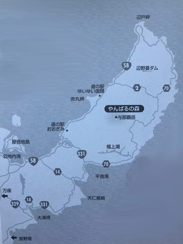 クワガタの採集場所・沖縄県