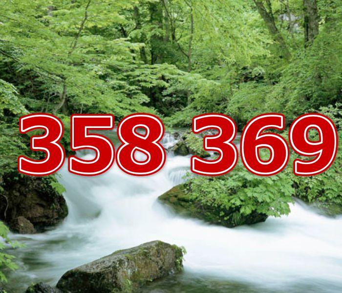 358 369 意味